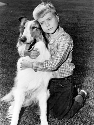 Jon Provost Lassie With