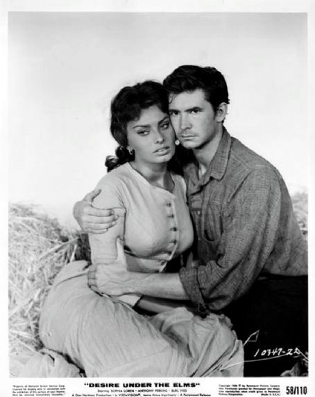 Desire Under the Elms Sophia Loren and Anthony Perkins in  (1958)
