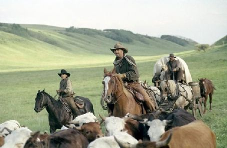 Open Range Button (Diego Luna, left), Charley Waite (Kevin Costner, center), and Mose Harrison (Abraham Benrubi, right) drive cattle on the open range, the one place where a man can be free.