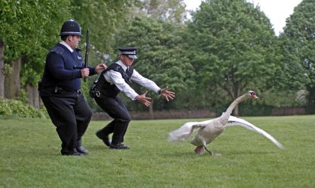 Hot Fuzz A scene from Rogue Pictures'  - 2007
