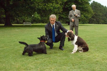 Toby Jones George W. Bush (Josh Brolin, front) and Karl Rove () in W. Photo credit: Sidney Ray Baldwin