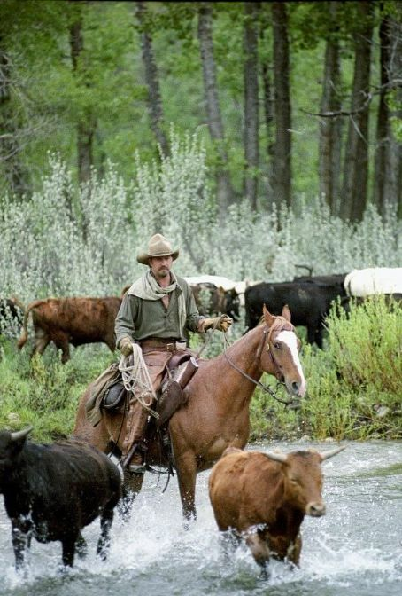 Open Range Loner Charley Waite (Kevin Costner) is a man trying to escape his violent past.