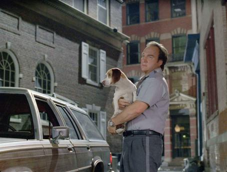 James Belushi (L-R) UNDERDOG, JAMES BELUSHI. Photo Credit: Richard Cartwright. UNDERDOG © Disney Enterprises, Inc. All Rights Reserved.