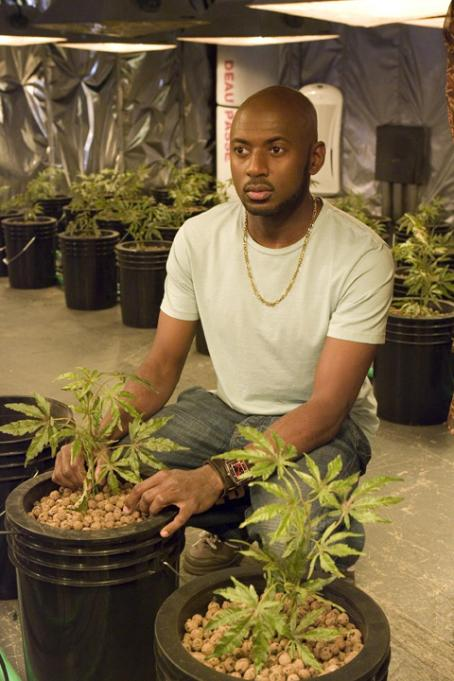 Romany Malco  ('Conrad Shepard') stars in Lionsgate Home Entertainment's Weeds: Season Three.