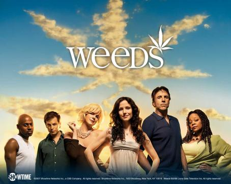 Romany Malco Weeds Wallpaper