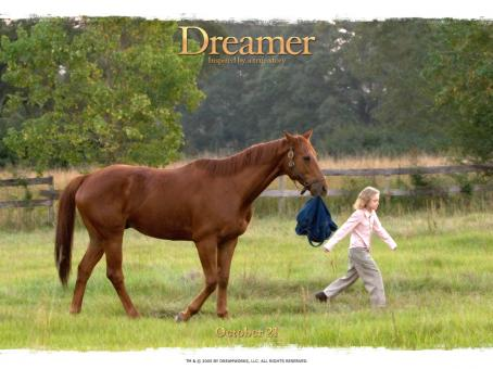 Cale Crane Dreamer: Inspired by a True Story wallpaper - 2005