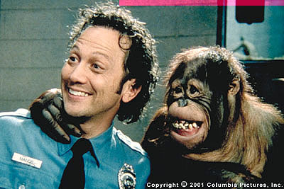 Rob Schneider Marvin () and one of Rianna's orangutans hide their rivalry with a smile in the Revolution Studios/Columbia Pictures comedy, The Animal - 2001