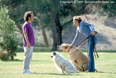 Colleen Haskell Animal magnetism ensues when Marvin (Rob Schneider) and Rianna () meet again in the Revolution Studios/Columbia Pictures release, The Animal - 2001