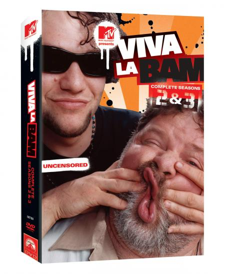 Viva la Bam Viva La Bam - The Complete Second and Third Seasons DVD cover - 2005