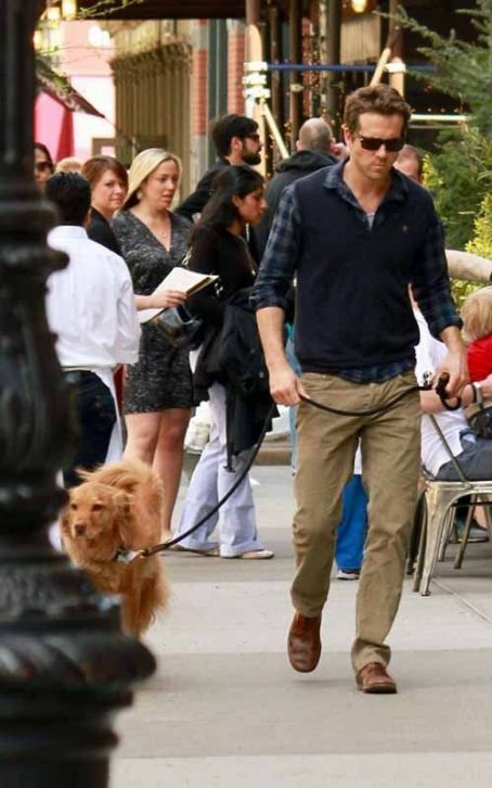 Ryan Reynolds & Pup: NYC Weekend Walkers