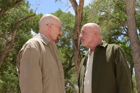 Jonathan Banks Breaking Bad (2008)
